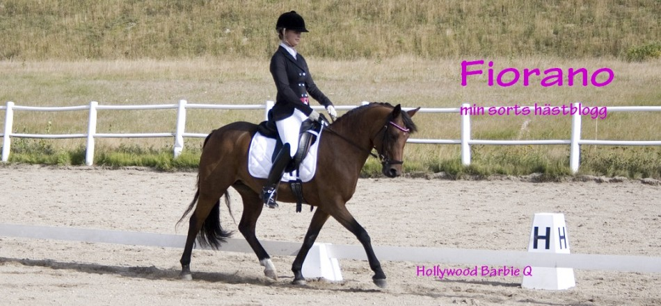 Fiorano-min sorts hästblogg
